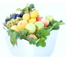 Cassetta frutta grande