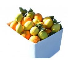 Cassetta arance e limoni
