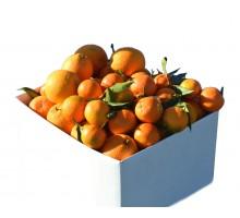 Cassetta arance e mandarini
