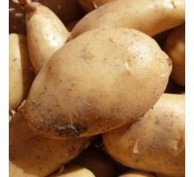 Patate gialle novelle