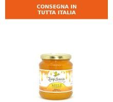Box da 6 Miele di Lupinella 500g - Confezione da 6 barattoli