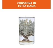9l - Olio extra vergine di oliva