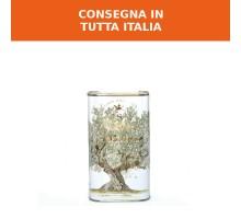4l - Olio extra vergine di oliva