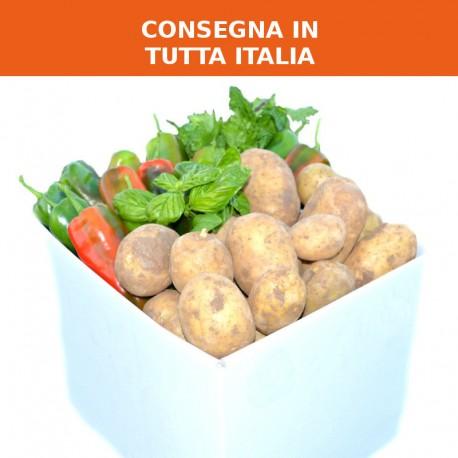 Cassetta patate e peperoni
