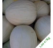 Melone bianco