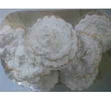 Bocconotto bianco
