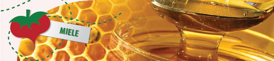 Miele: acacia, arancio, millefiori e tanti altri disponibili online