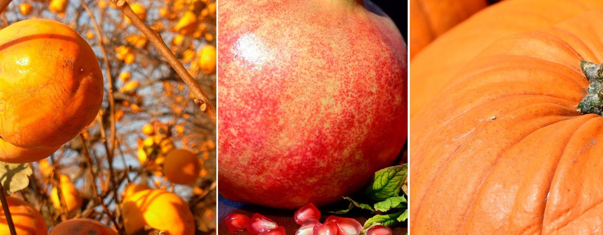 Frutta e verdura di Ottobre | La spesa di stagione